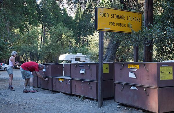 Yosemite, public food lockers pour protéger sa nourriture