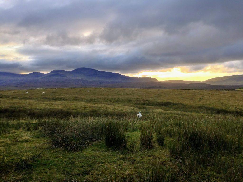 Coucher de soleil, mouton, île de Skye, leplusbeauvoyage.com